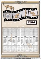 Meerkat 2016 Calendar