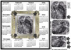 Owl 2016 Calendar