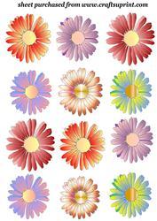 Daisy Topper/embellishment Sheet