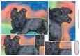 Laid Back Scottish Terrier Puppy Pyramage