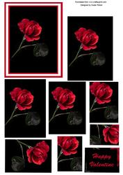 Valentine Single Rose