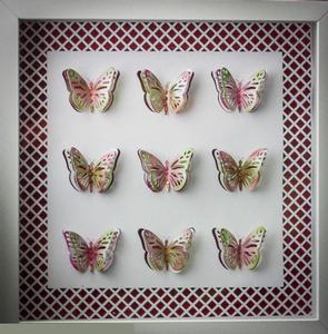 Butterflies / Dragonflies