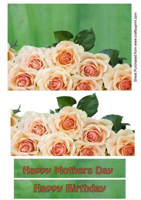 Roses A5 Horizontal Card