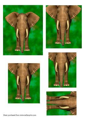 Elephant Pyramid