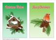 Winter Birds 2 A5 Card Fronts