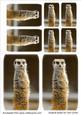 Meerkat Toppers
