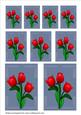 Red Tulips Toppers