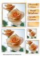 Salmon Roses 6x6 Card
