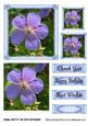 Blue Geranium 6x6 Card