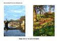 Bridges D Oil Painting Effect Two 7x5 Cards