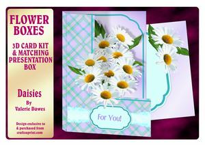 Flower Boxes 3D Card Kit - Daisies