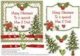 Merry Christmas to a Special Mum & Dad Card Front