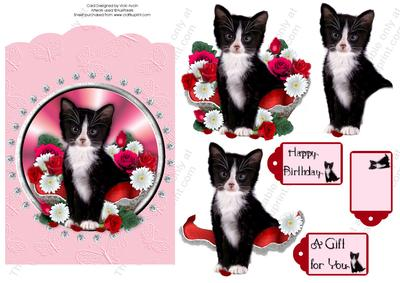 Black and White Kitten Scallop Top Birthday
