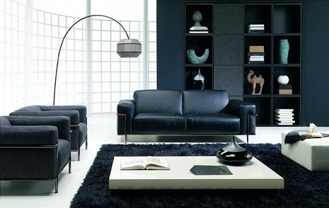 Modern living room designer furniture. black and white living room