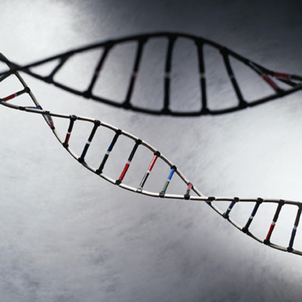 New Toolkit Will Help Patients and Families Navigate Cancer Genetics