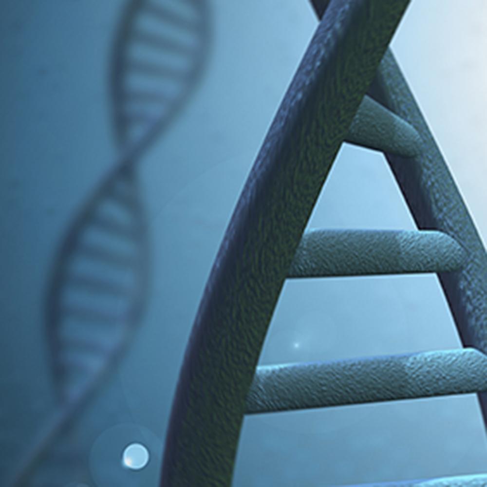 Drug Resistance Mediated by Gene Expression in Prostate Cancer