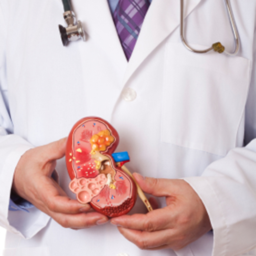 Combination Therapy Is Promising for Kidney Cancer, Expert Says