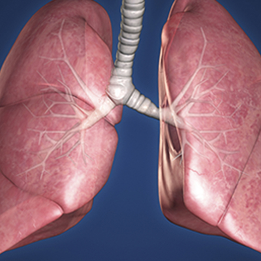 What's Next for Immunotherapy and Targeted Therapy in Lung Cancer?