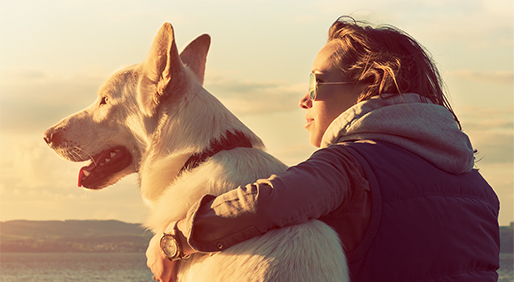 When Treating Your Skin Cancer, Protect Your Pets