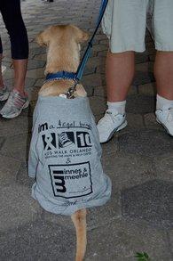 Legal Gets Ready For Aids Walk Orlando 2010 T-Shirt Photo