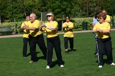World Tai Chi Day 2010 T-Shirt Photo