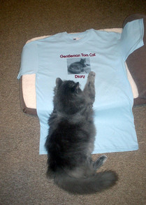 The Boss Approves The Gentleman T Shirt T-Shirt Photo