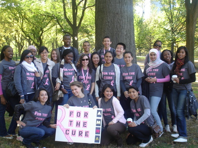 Amwa Makes Strides Against Breast Cancer T-Shirt Photo