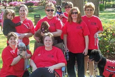 Team Wild Poodles At Ms Walk 2007 T-Shirt Photo