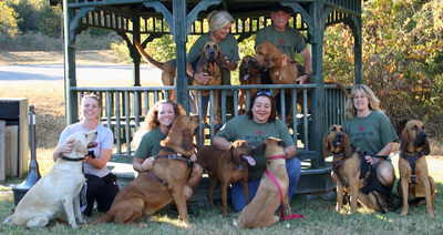 K9 Mash Team T-Shirt Photo