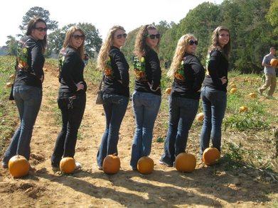 Trip To The Pumpkin Patch! T-Shirt Photo