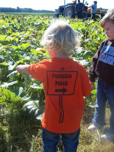 In The Pumpkin Patch T-Shirt Photo