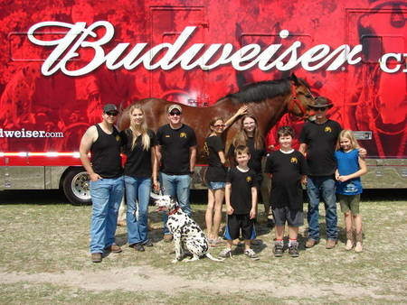 Budweiser Clydesdales Visit To Ft. Stewart, Ga  T-Shirt Photo