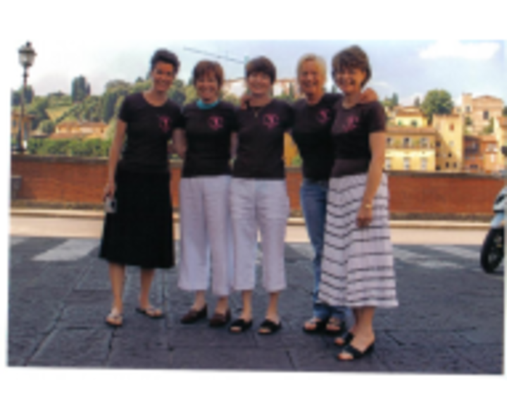 Collins Chicks Invade Italy T-Shirt Photo