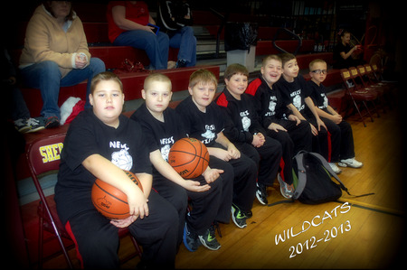 Wildcats T-Shirt Photo