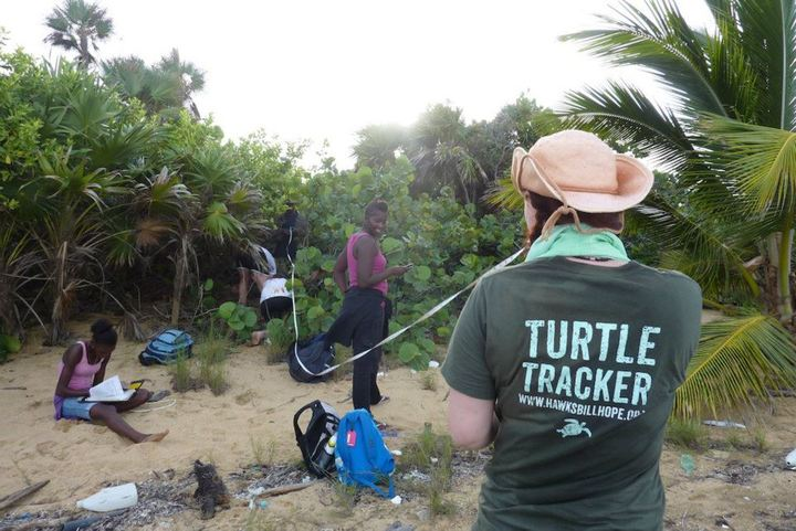 Turtle Trackers In Belize! T-Shirt Photo