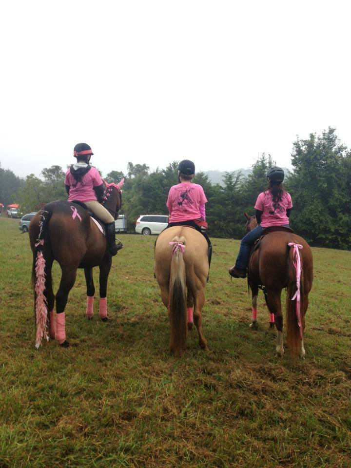 Ride For The Cure 2013  Breast In Show T-Shirt Photo