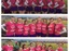 Pink out collage