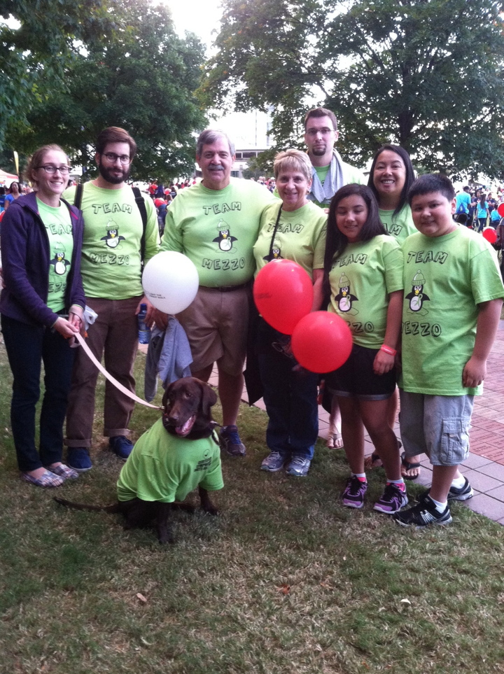 Lls Light The Night Walk Atlanta T-Shirt Photo