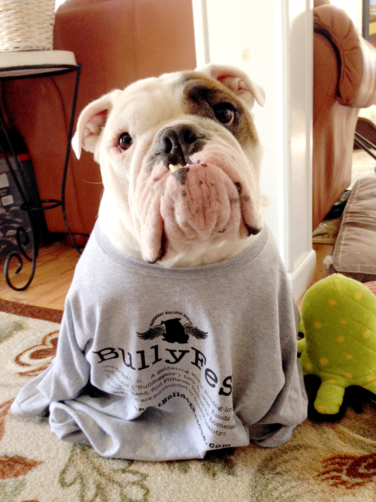 Design your own t-shirt for dogs - Bulldogs Love Custom Ink T Shirt Photo