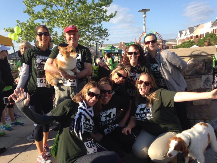Leesburg Veterinary Hospital Takes On Loudoun Lyme 5 K! T-Shirt Photo