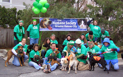 St. Patrick's Day Chaos: Who Let The Dogs Out? T-Shirt Photo