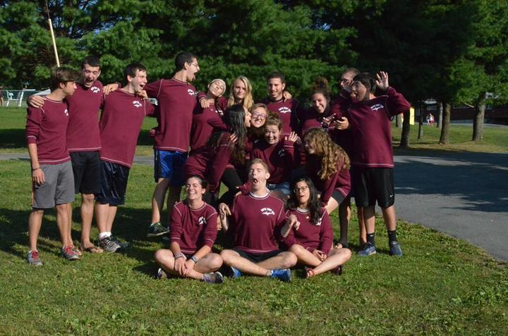 Pterodactyls At Camp? T-Shirt Photo