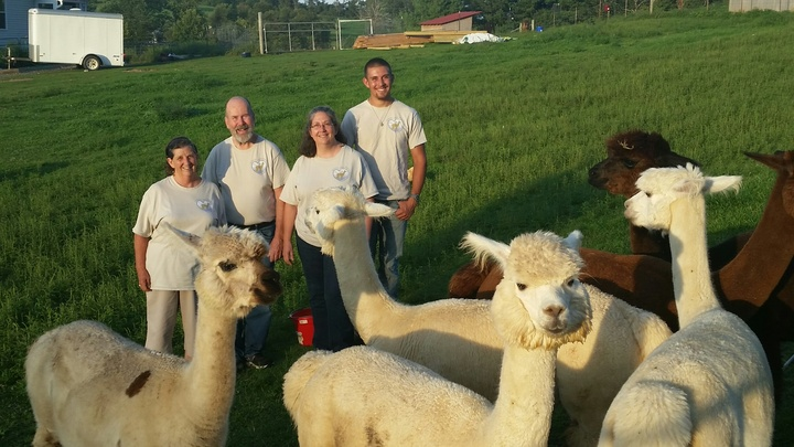Peaceful Heart Alpacas In Fancy Gap, Virginia T-Shirt Photo