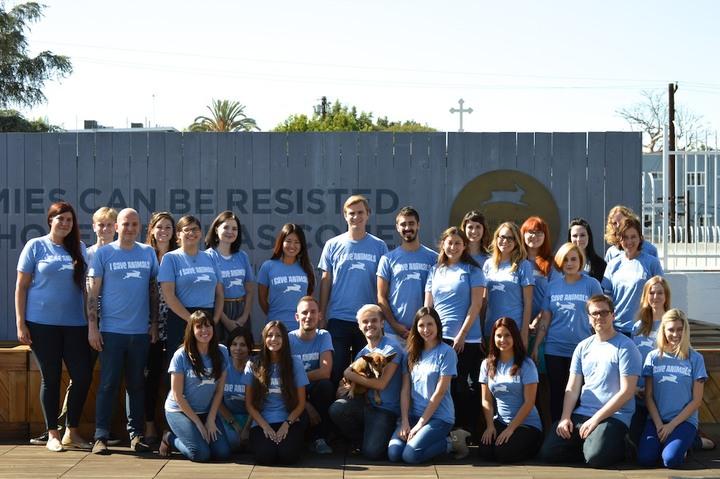 We Save Animals! T-Shirt Photo