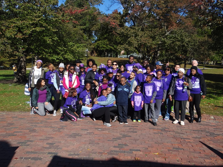 Walk To End Lupus T-Shirt Photo