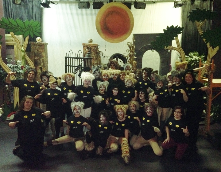 The Cast Of Cats!!! T-Shirt Photo