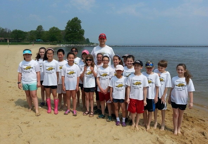 Horseshoe Crab Release Day T-Shirt Photo