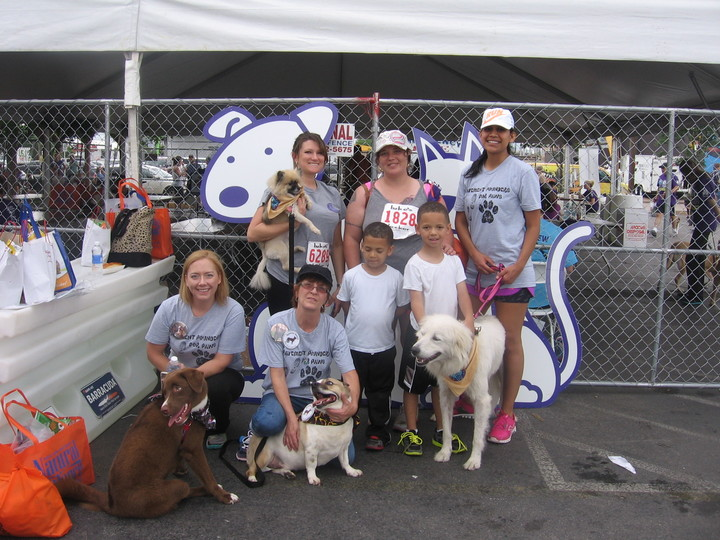 Pavement Pounders For Paws Team T-Shirt Photo
