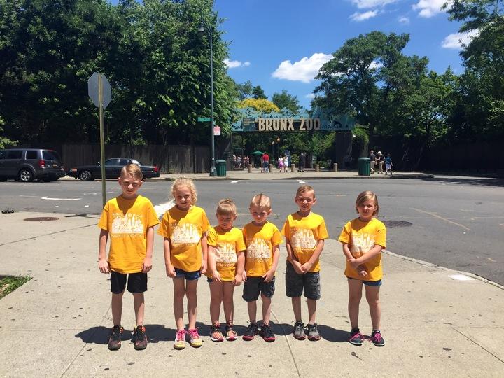 Bronx Zoo T-Shirt Photo