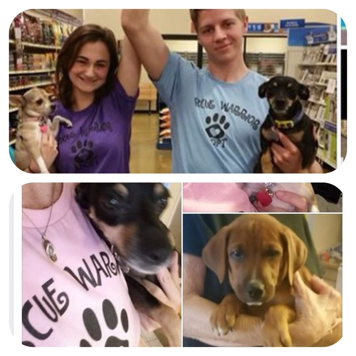 Adoption Events By Aara Pet Adoptions Rock! T-Shirt Photo